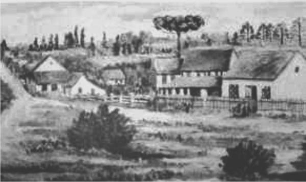 Avenida João Gualberto Antiga Boullevart II